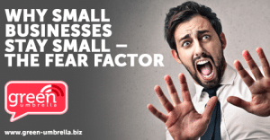 Why Small Businesses Stay Small – The Fear Factor – Part 1