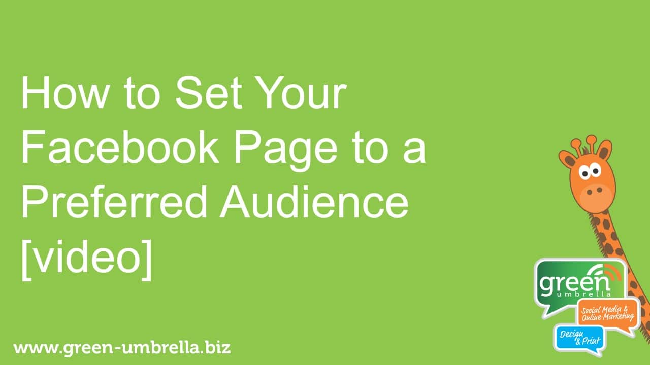 How to set your facebook preferred audience