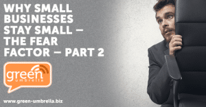 Why Small Businesses Stay Small – The Fear Factor – part 2