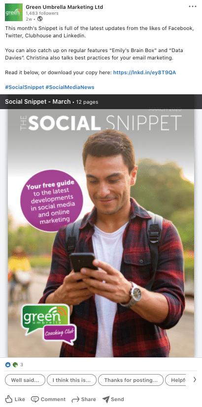Social Snippet PDF image